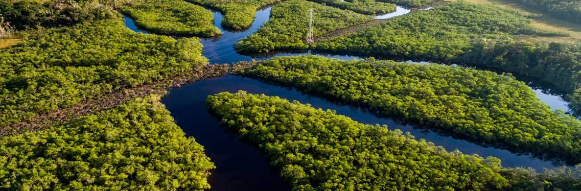 Sustentabilidade e maio ambiente
