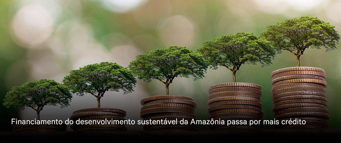 Imagem de representantes indígenas durante o evento preparatório para o Fórum Mundial Amazônia+21