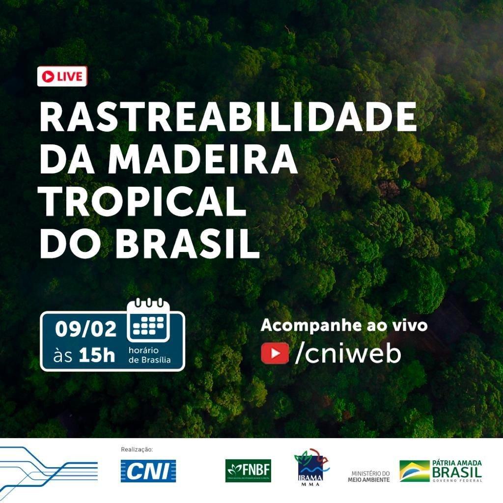 rastreabilidade_da_madeira_tropical_do_brasil.jpg