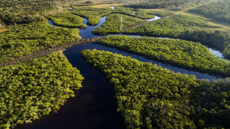 REPORTAGEM ESPECIAL: Economia circular traz oportunidades para avanço da agenda da sustentabilidade no Brasil