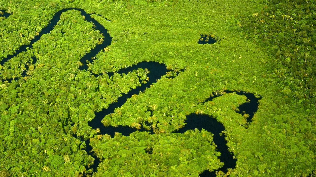 Brasil pode liderar a economia de baixo carbono