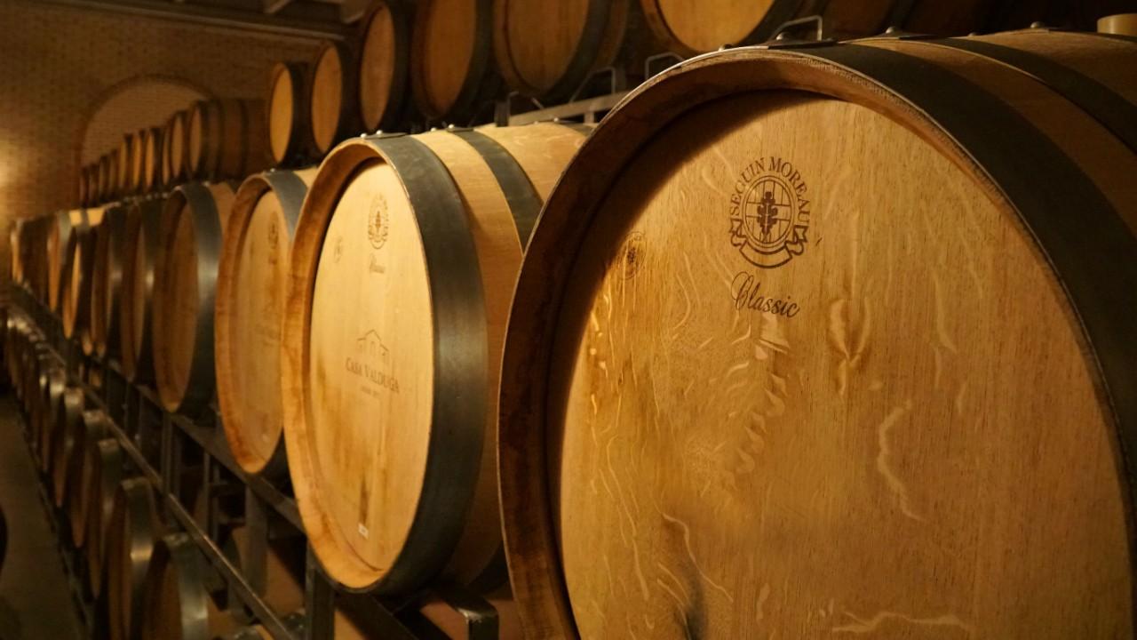O vinho do Vale