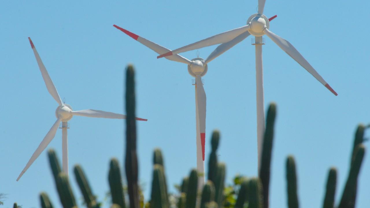 Regulamentação do licenciamento ambiental é necessária para o desenvolvimento econômico sustentável