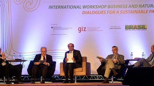 Biodiversidade gera oportunidades para elevar a competitividade do Brasil
