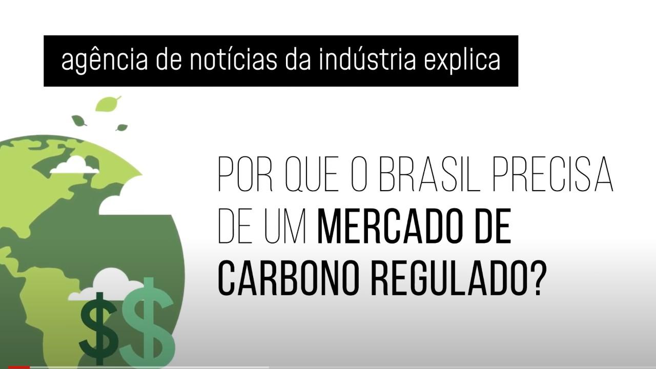 VÍDEO - Por que o mercado regulado de carbono pode ser uma boa para o Brasil?