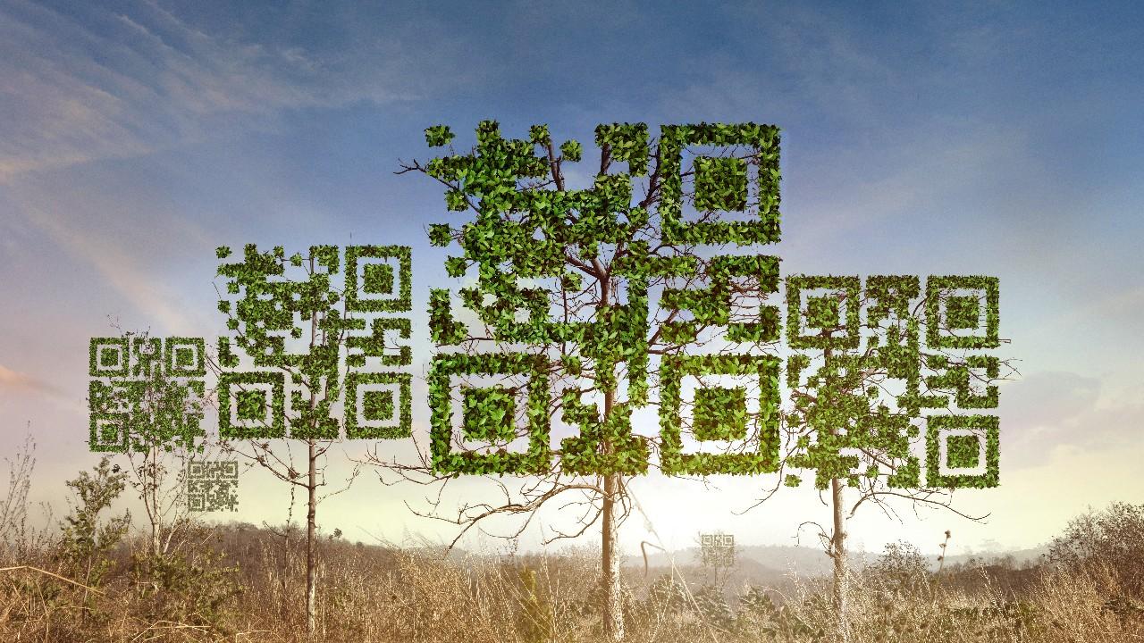 Com quase dez anos, Código Florestal ainda enfrenta desafios em sua implementação
