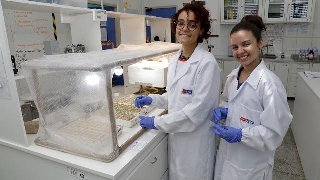 Alunas do SESI são premiadas em feira científica internacional