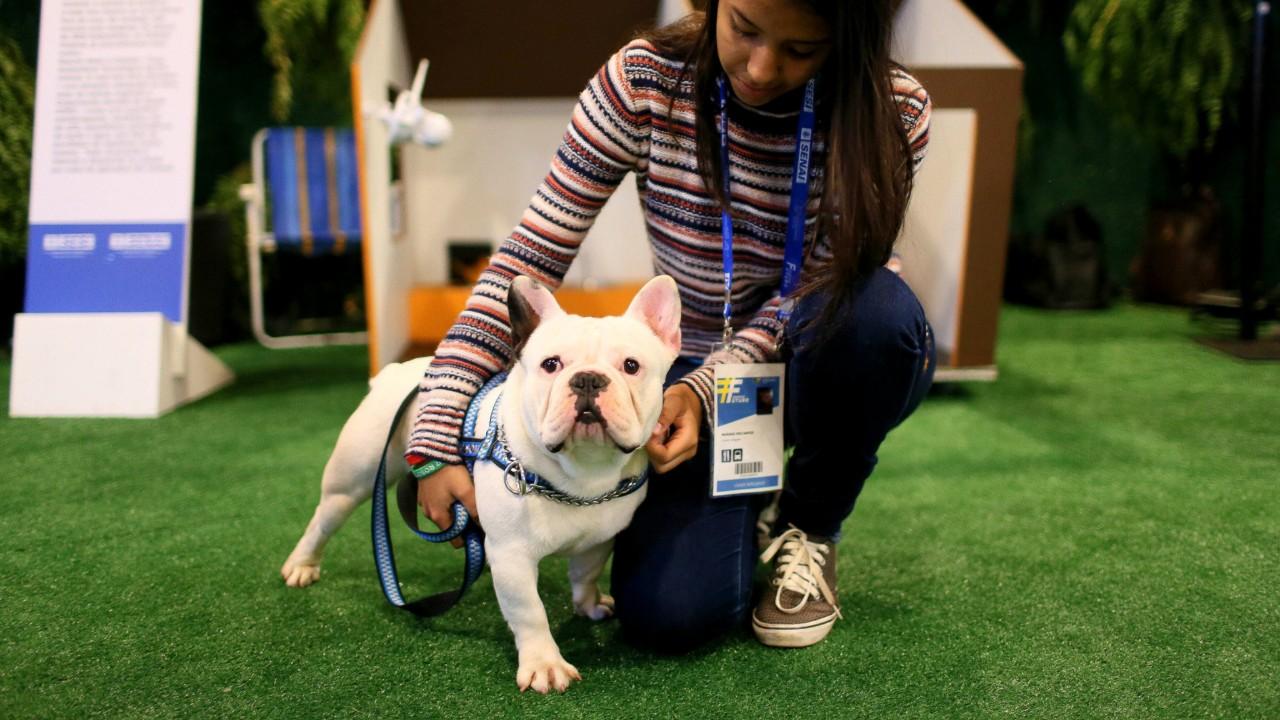 Estudantes de robótica do SESI desenvolvem solução para economizar água no banheiro e casa inteligente para cães