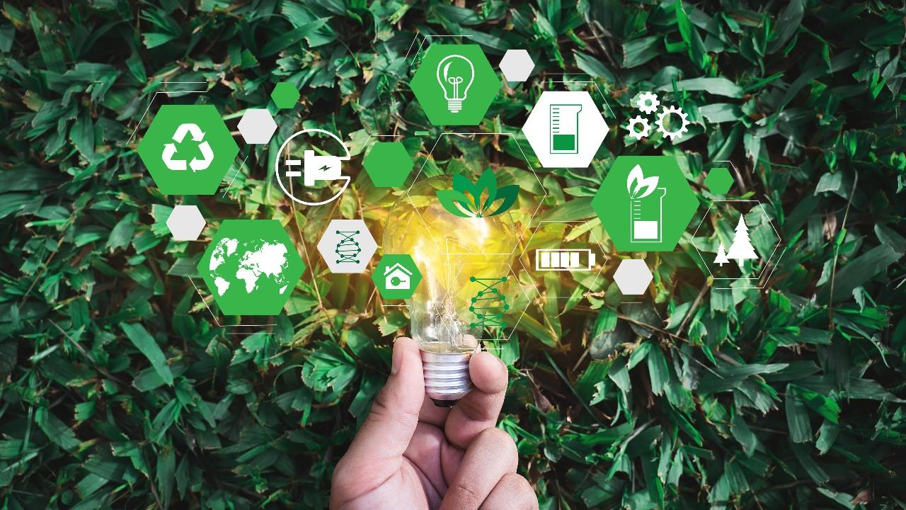 O potencial do desenvolvimento sustentável no Brasil
