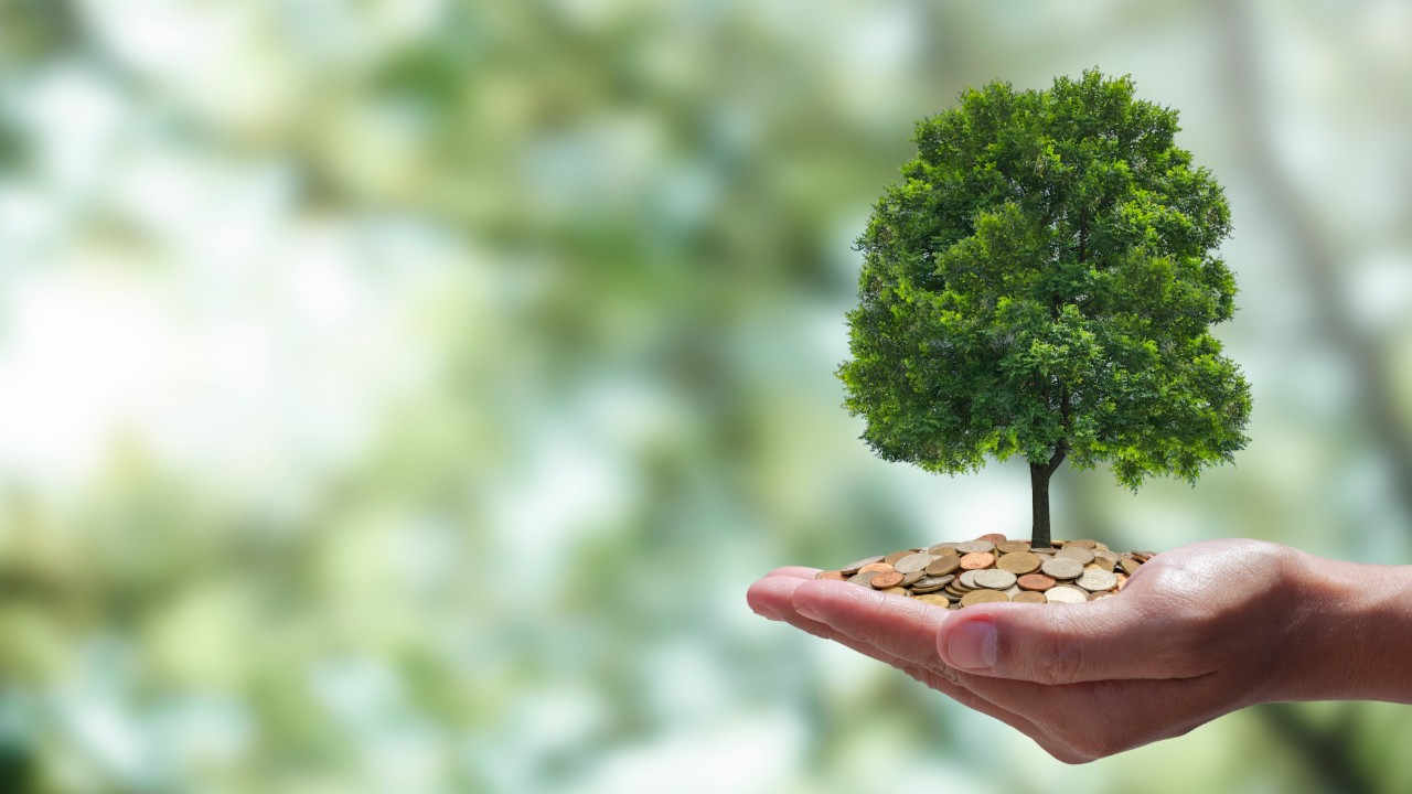 Indústria quer reconhecimento de créditos de carbono gerados antes do Acordo de Paris
