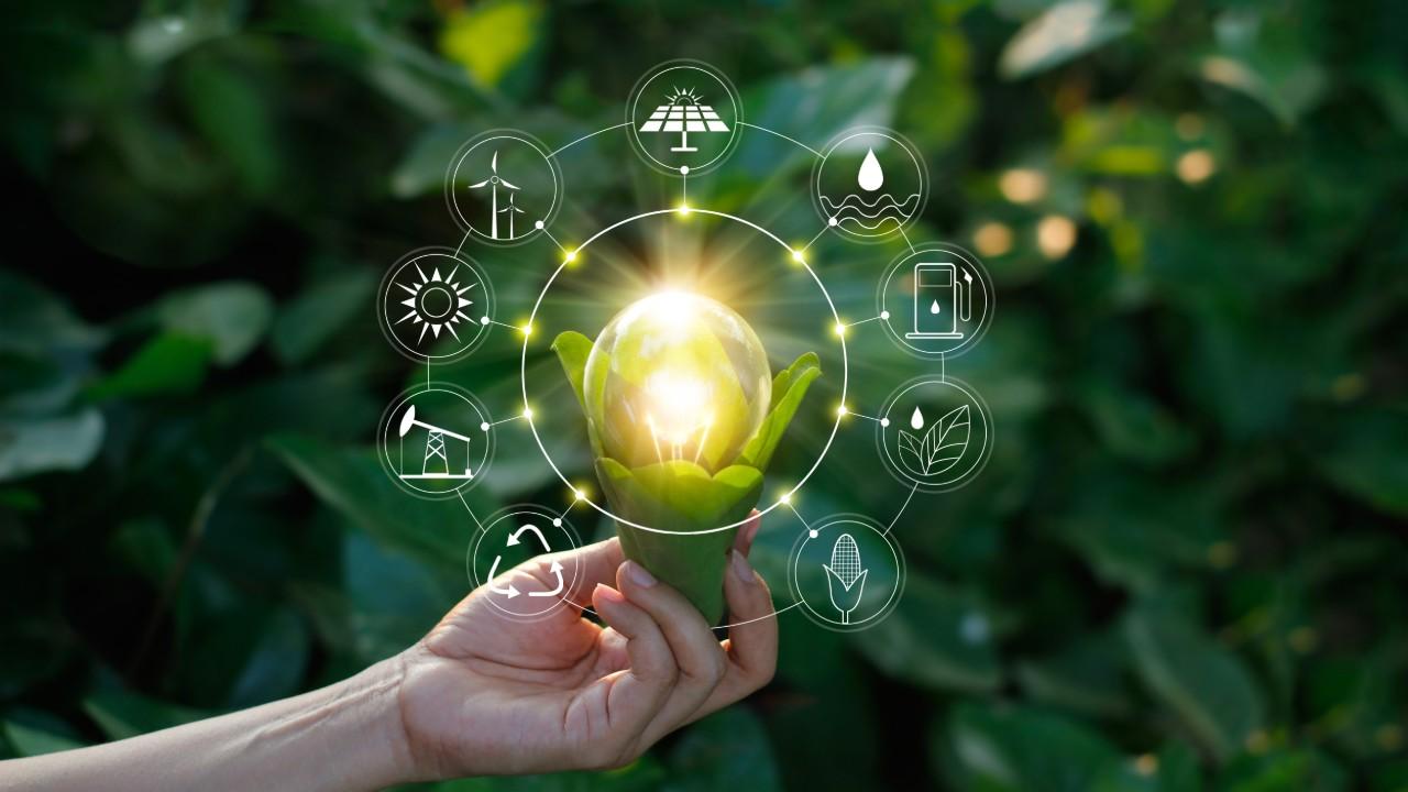 Agenda da sustentabilidade será indutora da retomada da economia, apontam especialistas