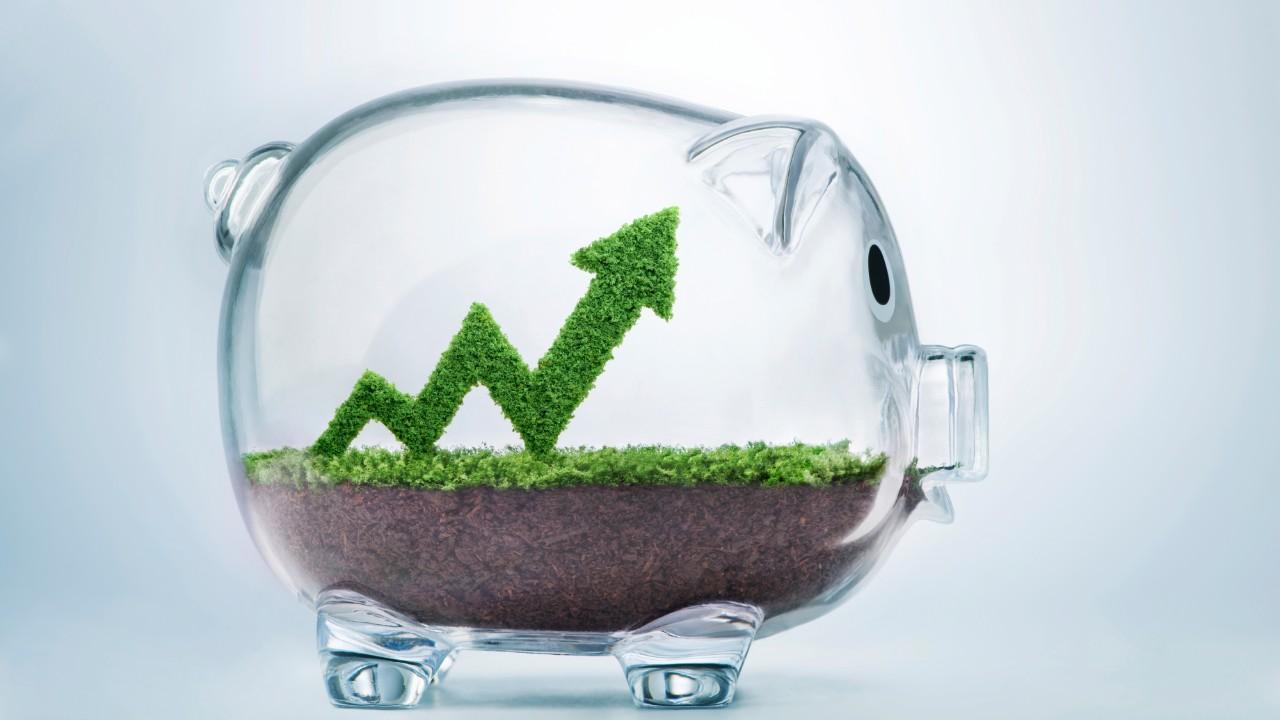 Como sua empresa pode conseguir recursos para projetos de baixo carbono?