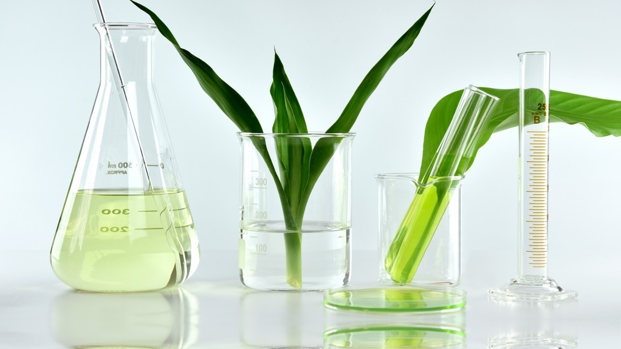 Ratificação do Protocolo de Nagoia impulsionará potencial do Brasil em bioinovação