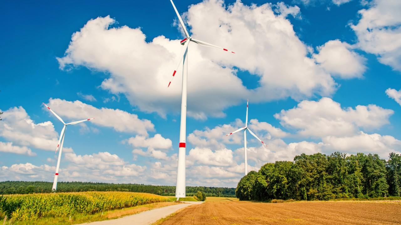 Indústria brasileira apoia governo no avanço de negociações sobre livre mercado de carbono global durante a COP-24