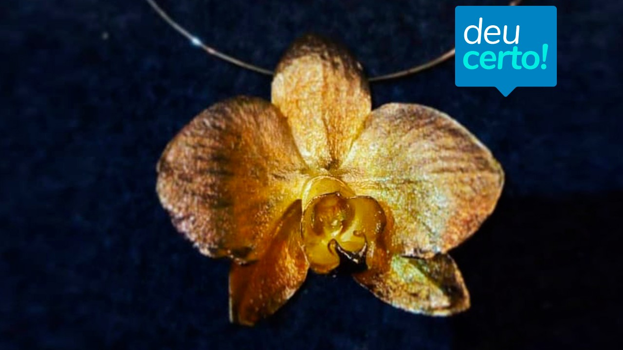 Flores brasileiras banhadas a ouro conquistam a Europa