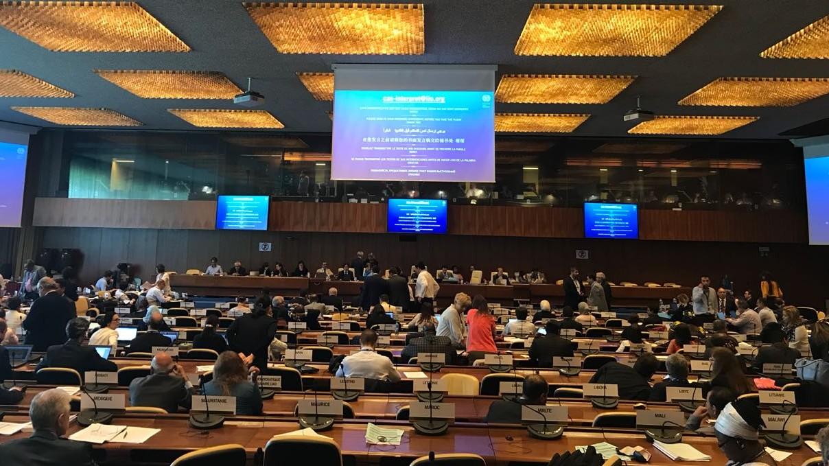 OIT não pode mudar a regra do jogo na aplicação de tratados internacionais