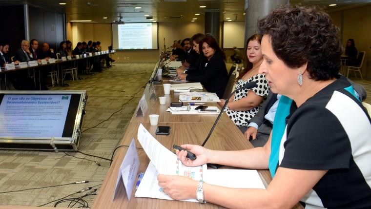 Setor empresarial deve assumir papel mais relevante na agenda de desenvolvimento sustentável, destaca representante da Abrinq