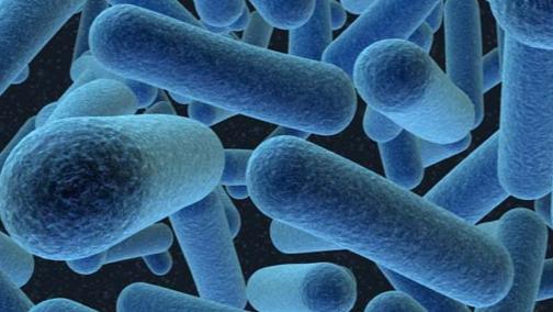 Empresa desenvolve tecnologia nuclear para eliminar bactérias