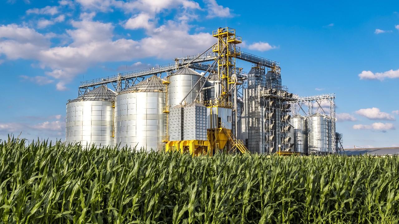 Governo e agroindústria debatem preparação  para COP26 e reunião ministerial da OMC