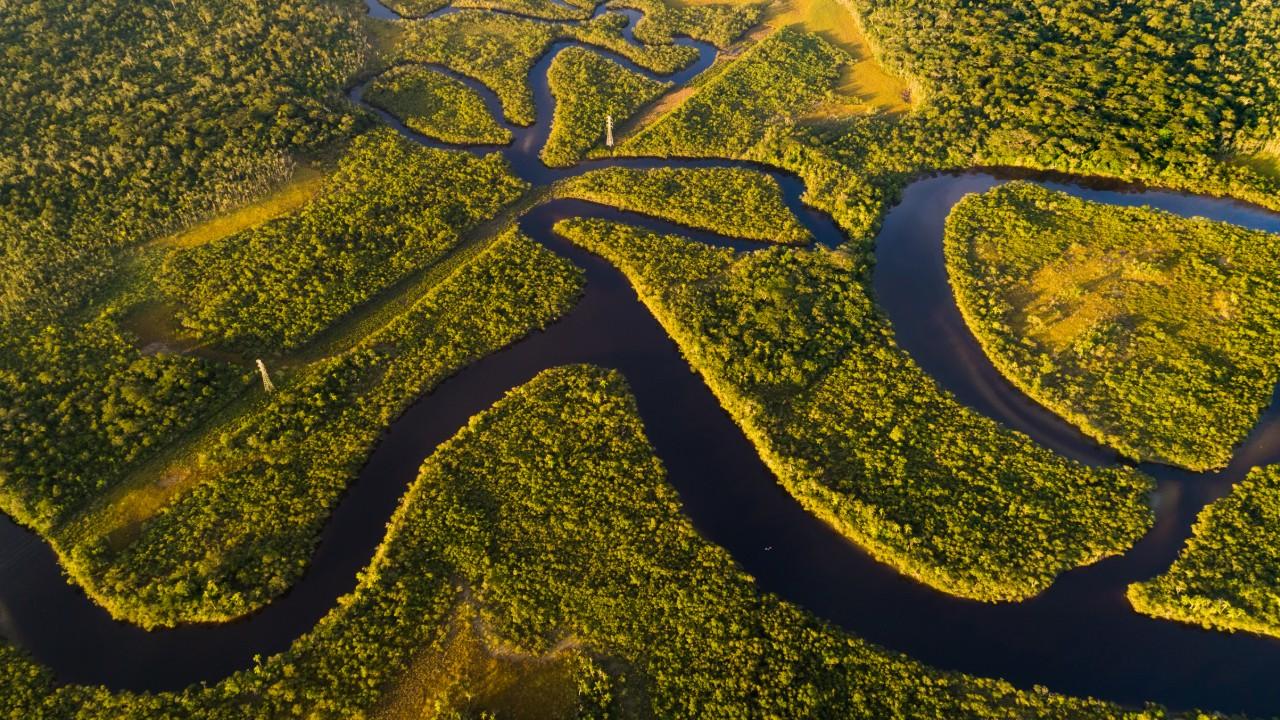 Brasil e o mundo têm muito a ganhar com desenvolvimento sustentável da Amazônia
