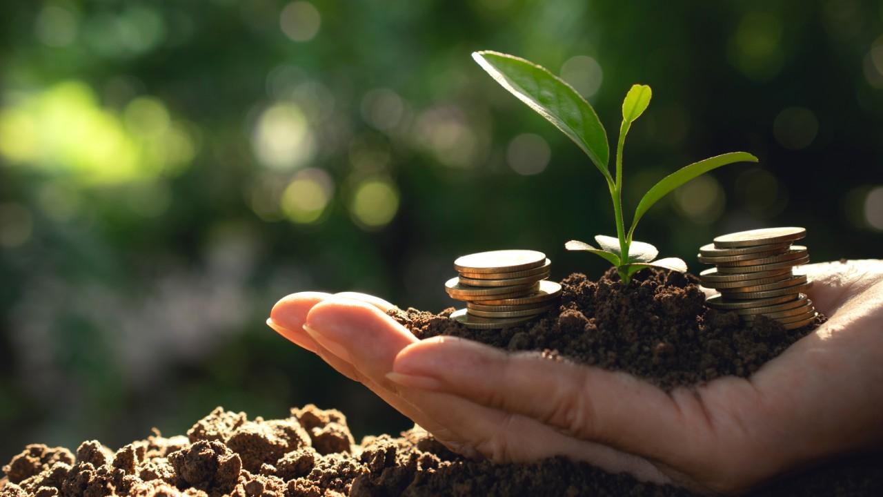 Financiamento do desenvolvimento sustentável da Amazônia passa por mais crédito