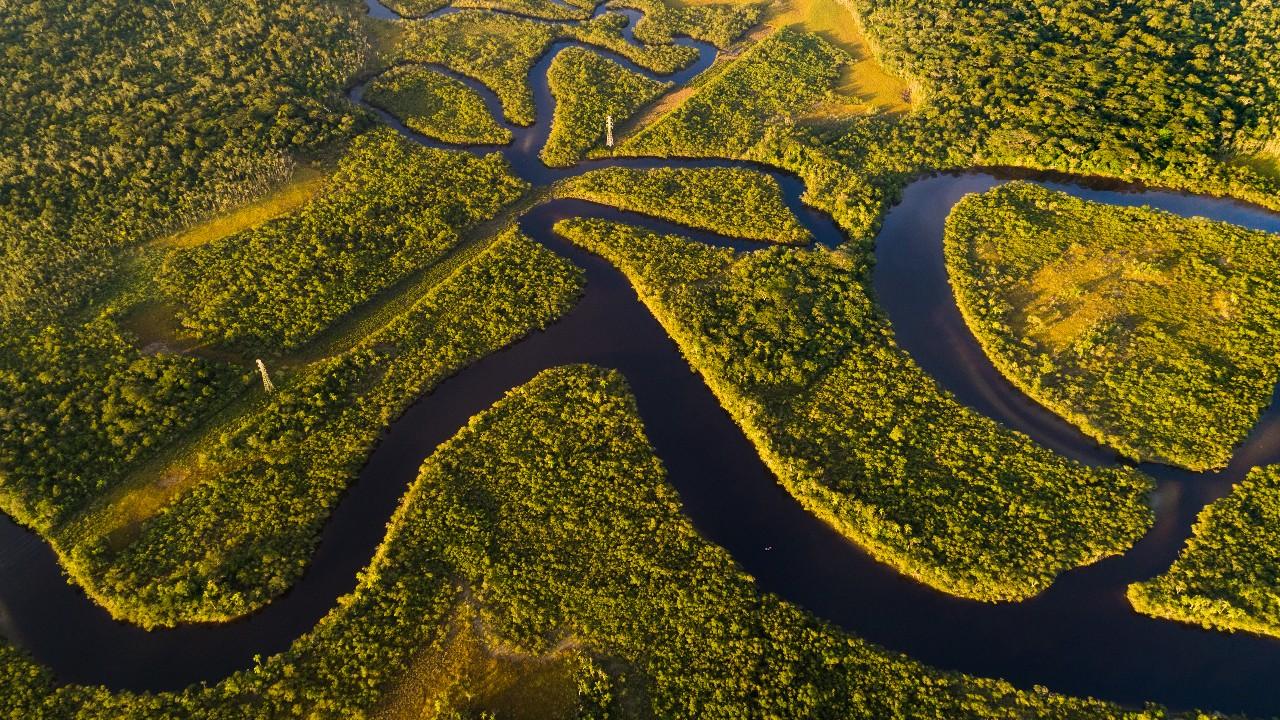 Business Connection Brazil Amazônia: inscrições abertas para rodada de negócios internacionais