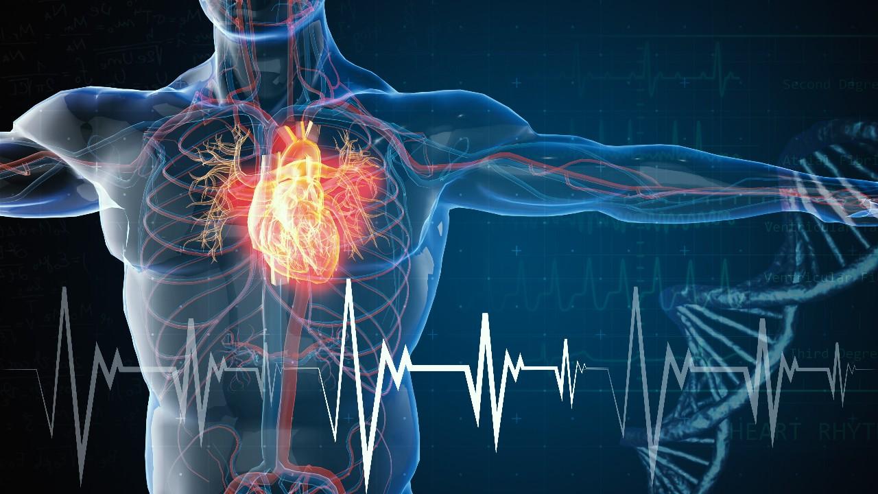 SESI apoia campanha sobre cuidados com a saúde cardiovascular