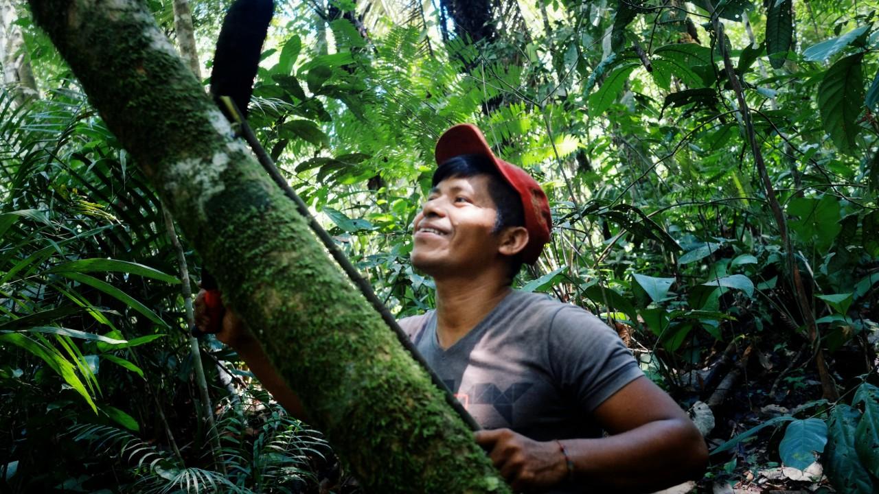 Amazônia pode ser transformada com mais ciência e inovação