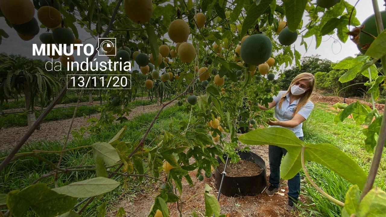 VÍDEO: Minuto da Indústria aborda importância das eleições dos EUA e da bioeconomia para o Brasil