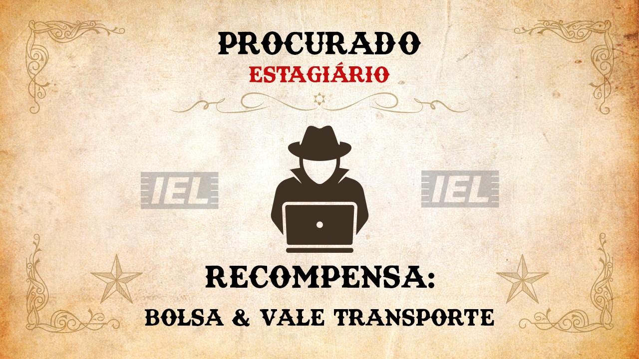 Procura-se estagiário! IEL tem quase 2 mil vagas pelo Brasil
