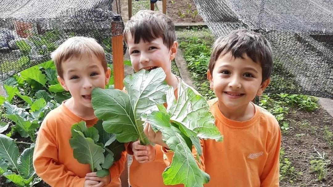 Horta criada por alunos do SESI está entre as melhores práticas da educação infantil do país