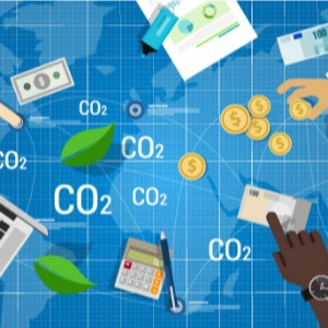 Como tornar viável o mercado global de carbono?