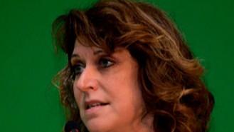 As regras de licenciamento ambiental precisam ser claras e objetivas, diz Mônica Messemberg