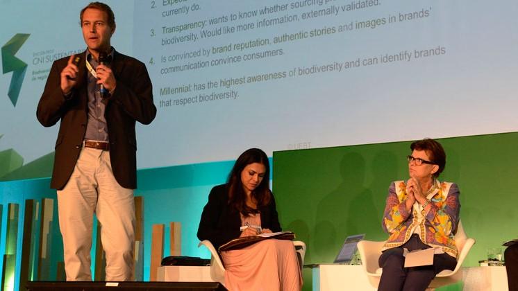 Mercados de biodiversidade e floresta têm grande potencial de crescimento no Brasil