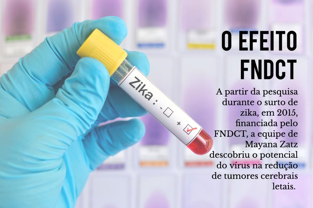 Efeito FNCT: A partir da pesquisa durante o surto de zika, em 2015, financiada pelo FNDCT, a equipe de Mayana Zatz descobriu o potencial do vírus na redução de tumores cerebrais letais.
