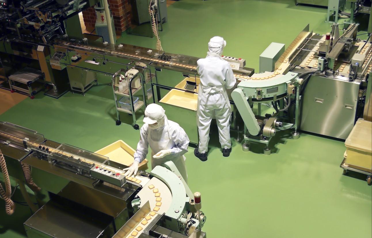 Fábrica de confeitaria em biscoito de produção