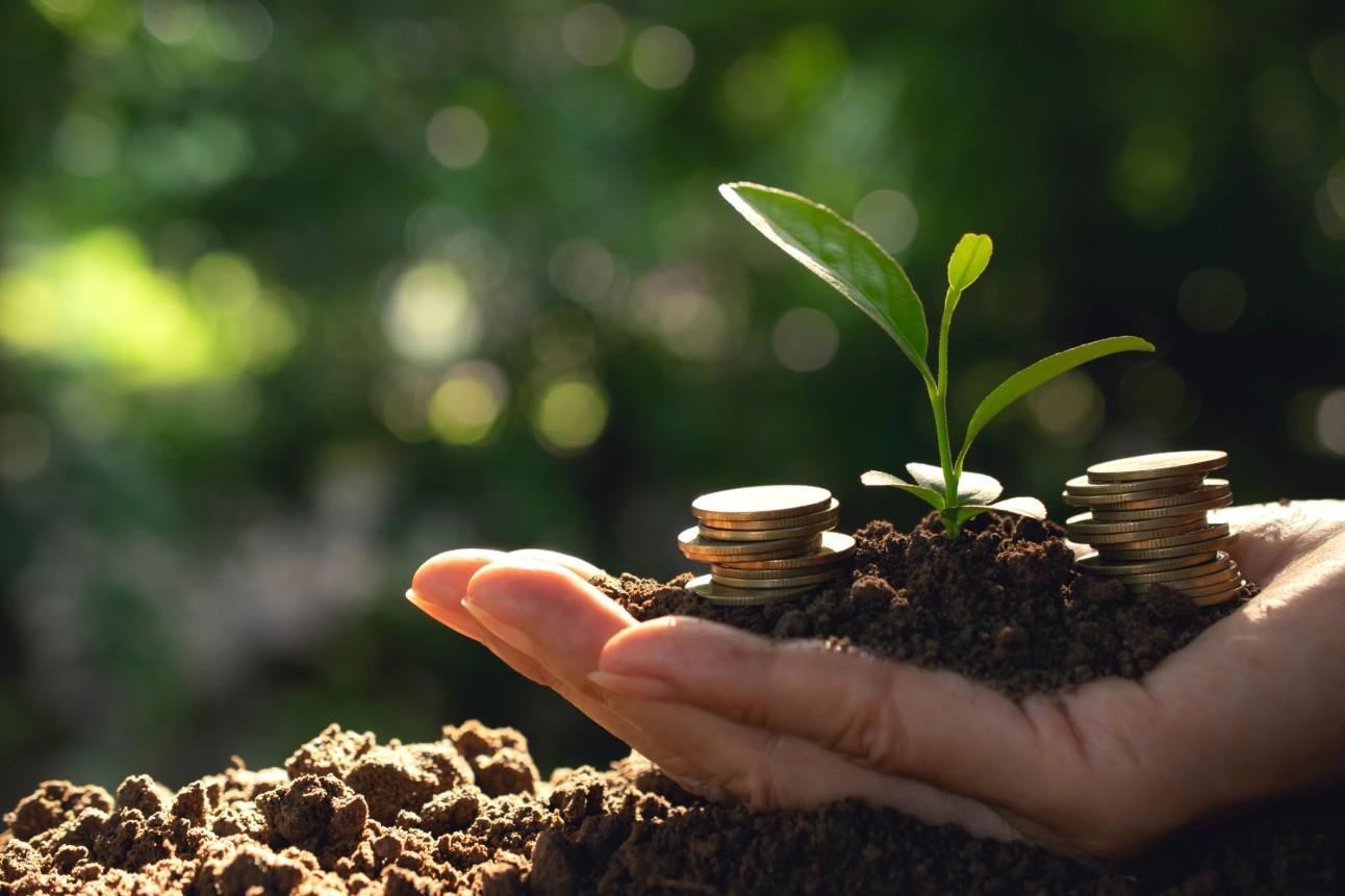 Financiamento do desenvolvimento sustentável da Amazônia passa por mais  crédito - Agência CNI de Notícias